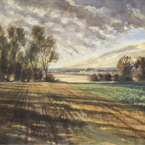 Suffolk fields, Rupert Brown